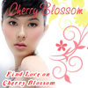 Cherry Blossoms -Filipina Dating site