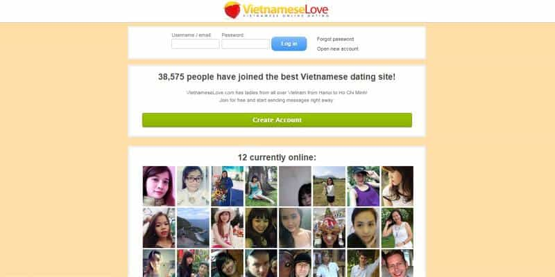 Vietnamese Love website