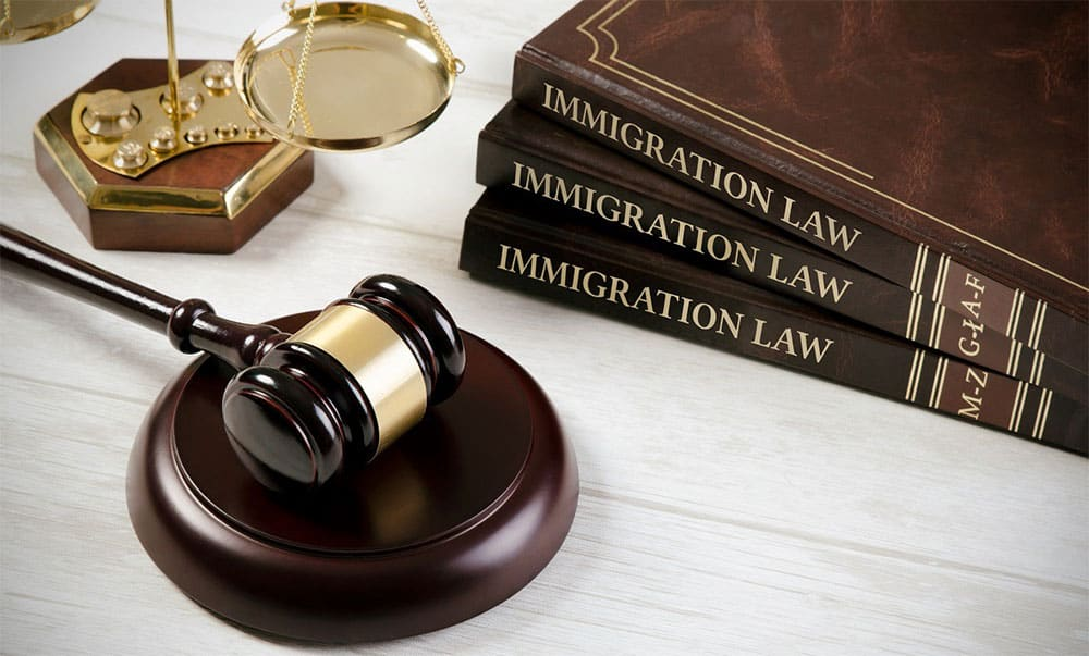 books about immigration law and a gavel