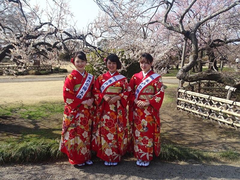 Japanese women wearing traditional kimonos