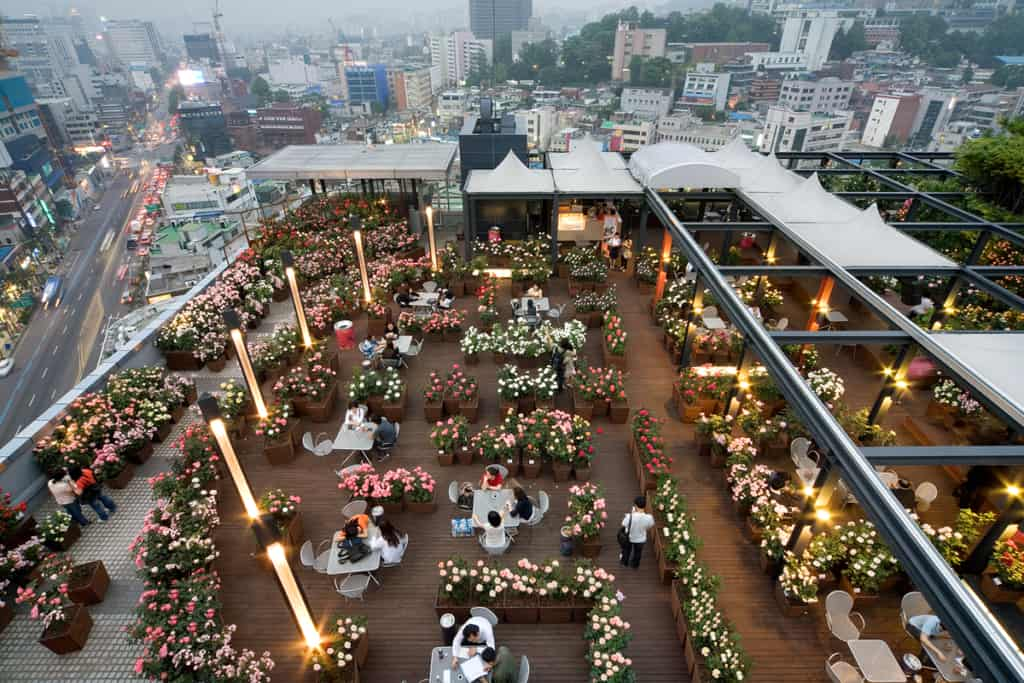 Sky Rose Garden Korea