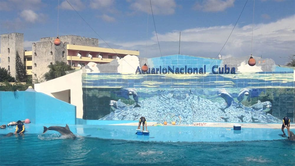 Acuario Nacional a must see place in Cuba