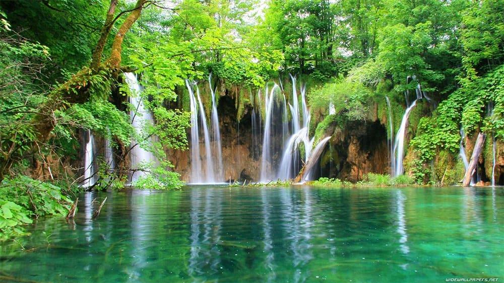 beautiful scenery of La Paz Waterfall Gardens Nature Park Costa Rica